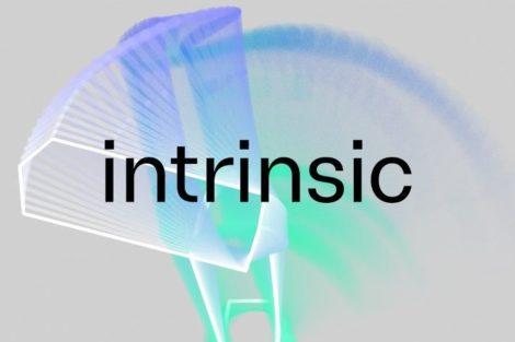 Google_Intrinsic.jpg